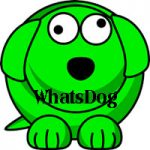 WhatsDog Apk indir
